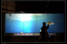 24 inch usb interactive touch foil film through glass, usb touch foil,2 touch points touch screen foil for LCD monitor