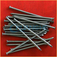 Manufacture high quality low price dongguan black concrete iron nails 1