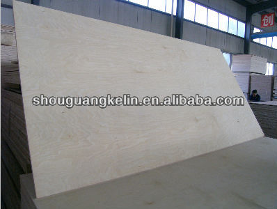 18mm Mexico/America market birch plywood