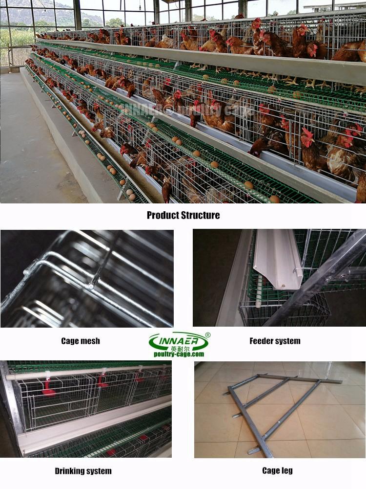 Innaer גבוהה באיכות עופות ביצת שכבה עוף כלוב למכירה