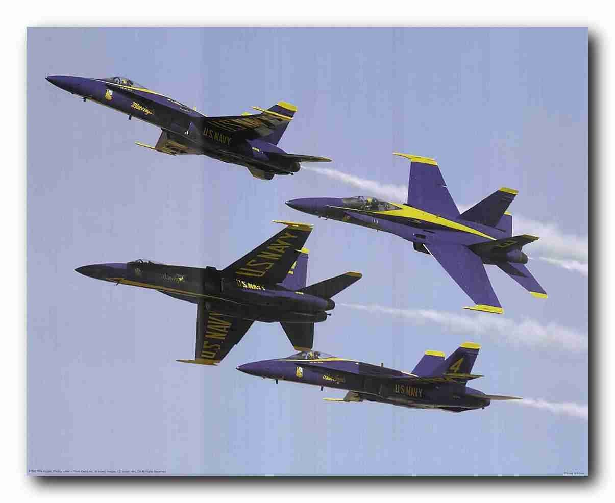 US Blue Angels Military Aircraft Jet Aviation Airplane Wall Decor Art Print Poster (16x20)