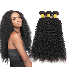 Best Service Brazilian Human Hair Water Wave Extension Wig