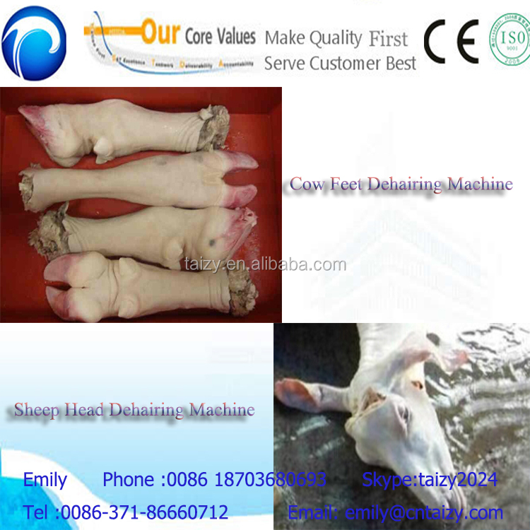 high dehairing rate cow feet and foot hair removal machine
