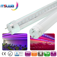 Buy Indoor Greenhouse Led Grow Light tube in China on Alibaba.com