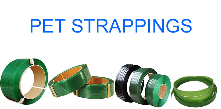 2018 new products green pet strap band environment-friendly