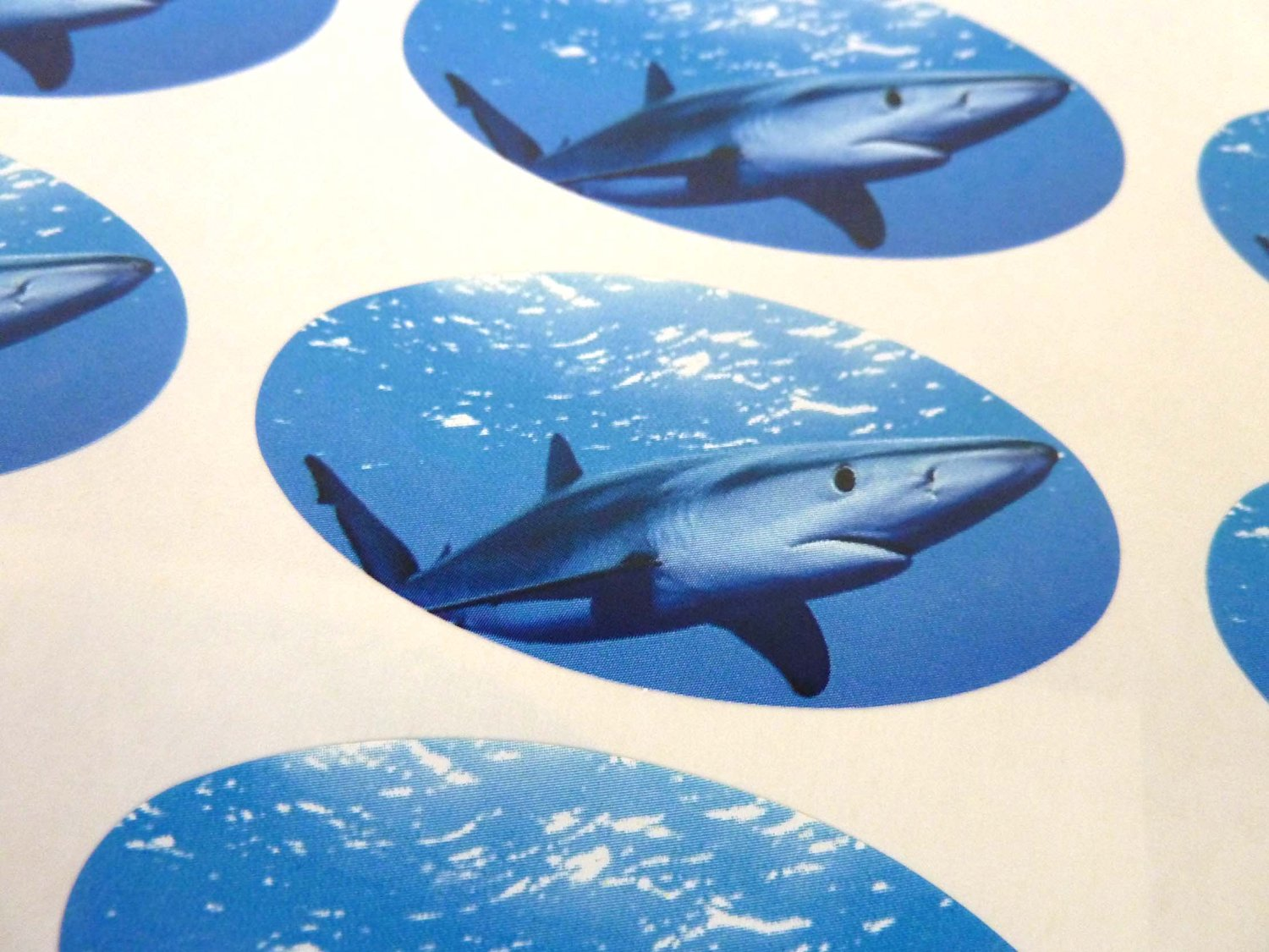 Cards Killer Whale Oval Seal Labels Stickers for Craft Envelopes Gift Wrap