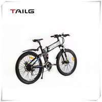 2015 new style hot sale 250w 20 inch electric folding bicycle