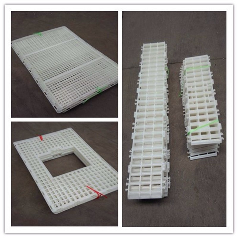 latest professional poultry chicken live cages to transport cage layer for sale