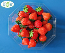 Disposable clear plastic tray for fruit packaging