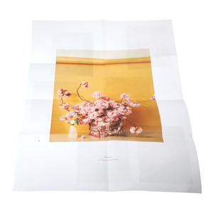 Large quantity vivid colorful A1 poster printing service