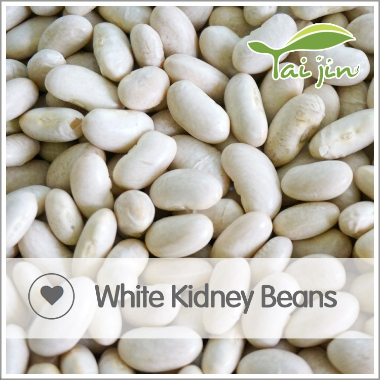 Export White kidney bean canned,lima beans