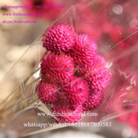 Wholesale Distributors Directory Artificial Flower Girl Dress For Funeral Flowers Arrangements From Sunshine Yunnan
