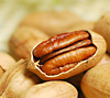 Preserved pure sun dried raw pecans with high quality, whole sale, good price