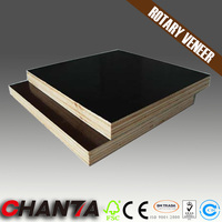 furniture making material combi core film faced plywood with great price