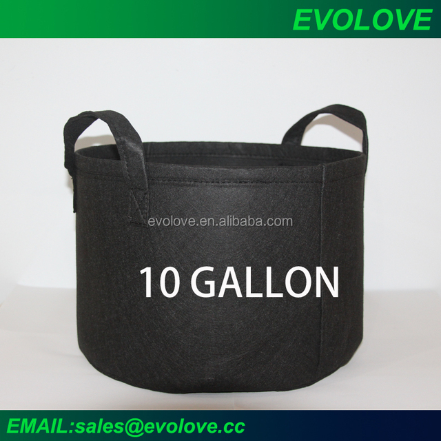 black felt 10 gallon nursery pot