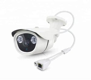 IP66 1/2.9 CMOS 2MP Metal Color Waterproof IR Kids Security Cameras PST-IPC113SL