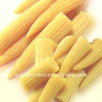 Canned baby corn / Tinned baby corn
