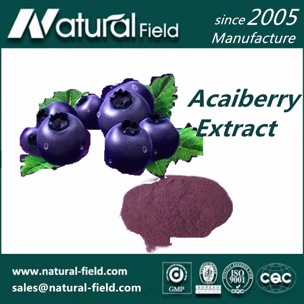 Organic Acai Berry Extract Powder 4:1 5:1 10:1 20:1