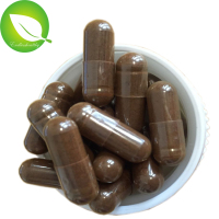 Health Care Products lingzhi powder capsule organic reishi mushrooms extract capsule