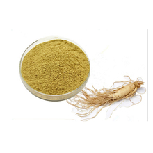 Hot sale wild ginseng root / korean ginseng extract powder