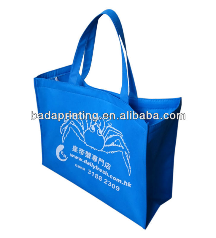 Hot seal non woven packaging bag,zipper cooler bag