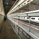 2017 new product new production 10000 layer chickens farm bird broiler cage system for sale
