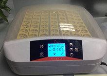 pre-sale newly arrival automatic egg testing LED controller mini incubator for sale with CE approved