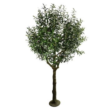 Tree Of Artificial 240cm Olive For Decoration