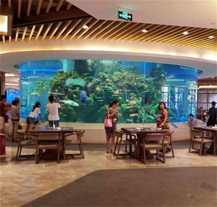 Gebruikt acryl aquarium voor verkoop en aquarium grote tank vis