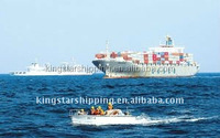 Best export import shipping company to Australia/US /EU from china