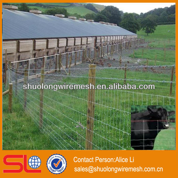 best price field fence ,cattle feed fence