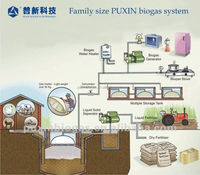 Widely applied PUXIN family size biogas plant for household waste management