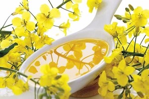 Good Quality crude rapeseed oil producers