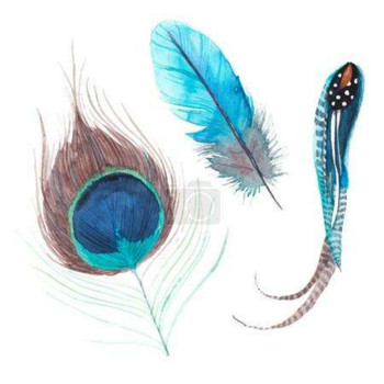 Hot Sale Exotic Feathers - Buy Exotic Feathers,Feathers ...