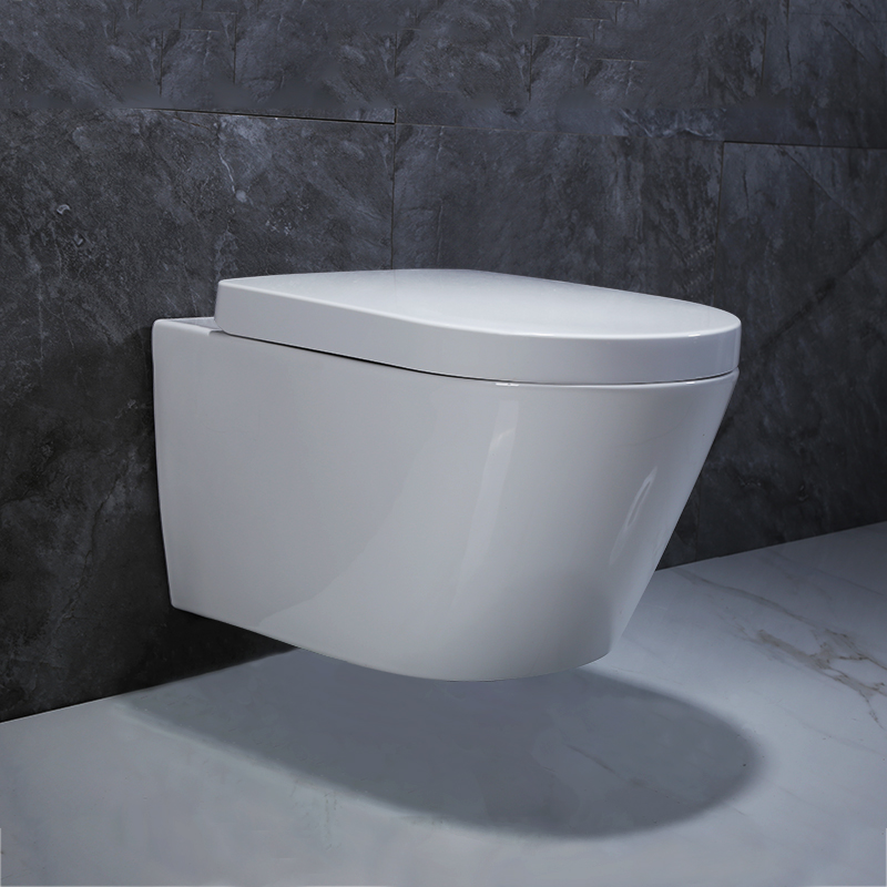 Wall Hung Toilet, Wall Hung Toilet Suppliers And Manufacturers At  Alibaba.com