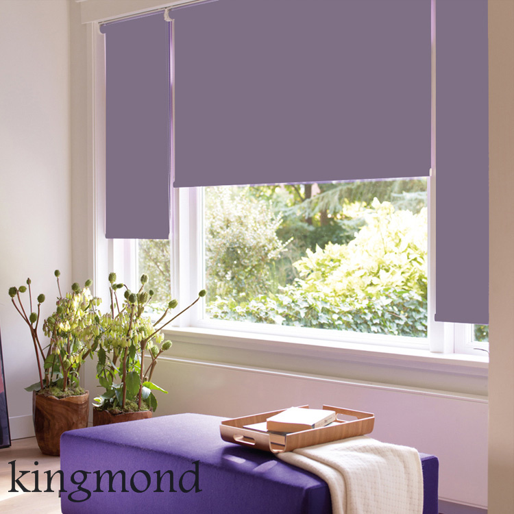 Wireless Remote Control Horizontal Electric Curtain