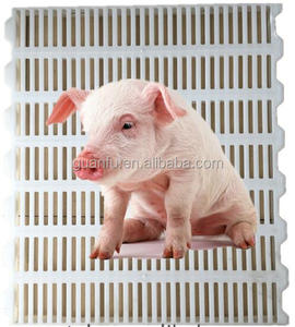 different sizes and colors plastic pig raised poultry floor system