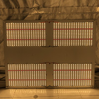 Kingbrite Pre-assemabled hlg 550 v2  samsung lm301b 3500K mix red 660nm quantum grow light