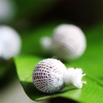 """Résultat de recherche d'images pour """"Tampons à base de plantes"""""""
