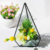 Pyramid Planter Geometric Glass Terrarium