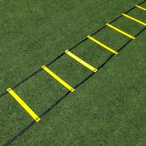 6 Meters 12 Fixed Rung Riveted Straps Football Training Agility Ladder