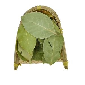 Natural new dried Sweet Bay whole leaf Bay Laurel for natural spice