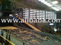 Eucalyptus woodchip & Mixed Woodchip for Energy