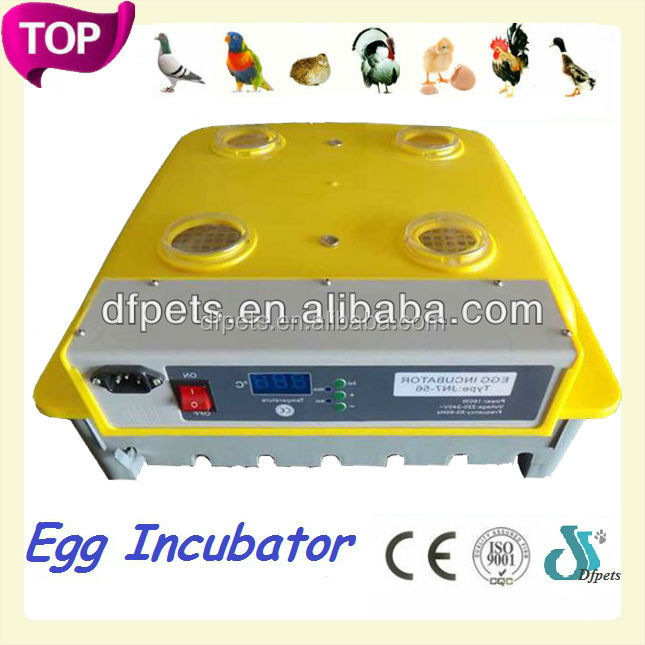 DFPets DFI003 Hot Sales chicken egg cabinet incubators