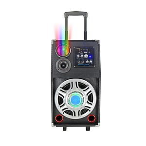 Hot Selling Portable Loudspeaker Trolley 60W Speaker With Flashing DJ Lights