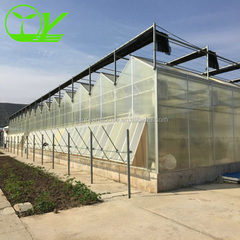 Polycarbonate Greenhouse Tunnel - Buy Greenhouse Tunnel,Greenhouse  Tunnel,Greenhouse Tunnel Product on Alibaba com
