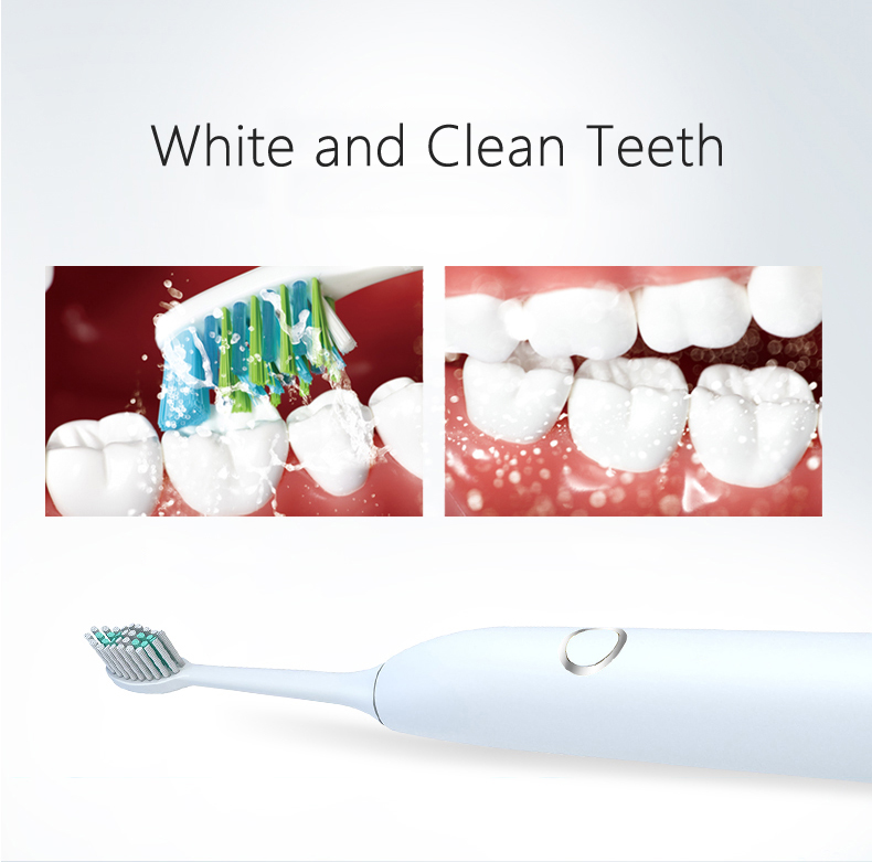 Electric Toothbrush 2000mAh Battery powered sound wave vibration electrical toothbrush waterproof