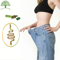 GMP Quality Assured Bio Diet healthy Best Diet for Losing Weight Quick