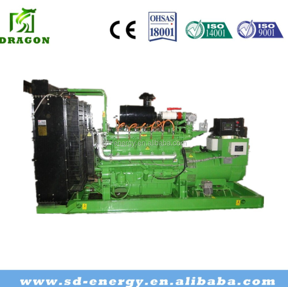 250kw Natural Gas / LPG Generator Price fuel LPG CNG LNG GAS mini power CCHP application