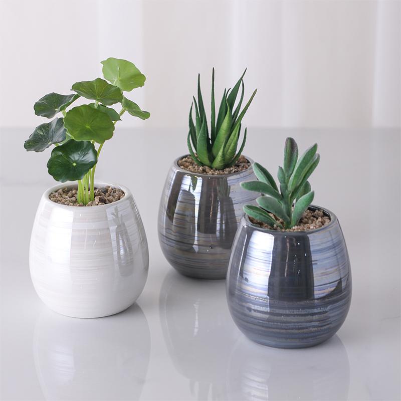 Alibaba.com / Home Decor Artificial Bonsai Succulent Plants With Ceramic Pot